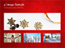 Christmas Tree Branches and Snowflakes slide 13