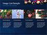Christmas Decorations slide 16
