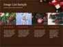 Christmas Gift Box slide 16