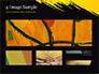 Yellow Brushstroke on Black Background slide 13