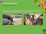 Funny Animals slide 11