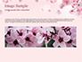Delicate Sakura Flowers slide 10