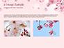 Delicate Sakura Flowers slide 11