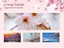 Delicate Sakura Flowers slide 13