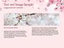 Delicate Sakura Flowers slide 14