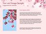 Delicate Sakura Flowers slide 15