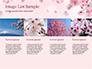 Delicate Sakura Flowers slide 16