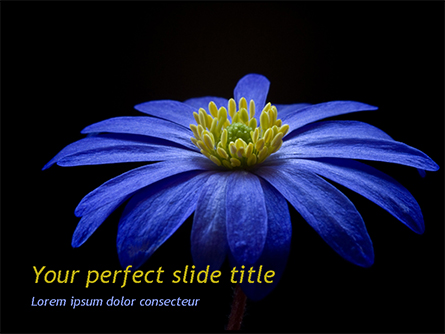 Blue Flower Presentation Template, Master Slide