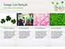 St. Patrick's Day Desserts slide 16