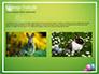 Cute Easter Background slide 11