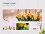 Nice Easter Background slide 13