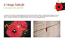 Anzac Day Background slide 11