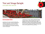 Anzac Day Background slide 14