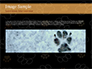 Paw Prints slide 10
