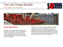 Background for Anzac Day slide 14
