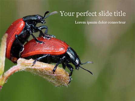 Two Ladybugs Presentation Template, Master Slide