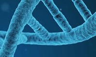 DNA Synthesis Presentation Template