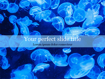 Group of Bioluminescent Jellyfish Presentation Template, Master Slide