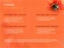 Bumblebee on Flower slide 2
