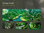 Tropical Rainforest slide 13