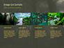 Tropical Rainforest slide 16