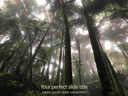 Tropical Rainforest Presentation Template, Master Slide