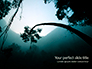 Rainforest Sunrise slide 1