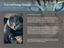Siberian Cat slide 15