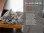 Siberian Cat slide 9