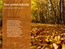 Beautiful Autumn Forest slide 9