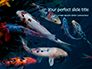 Koi Fish slide 1