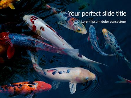 Koi Fish Presentation Template, Master Slide