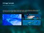 Whale Shark slide 12