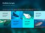 Whale Shark slide 17