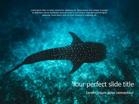 Whale Shark Presentation Template, Master Slide