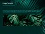 Palm Leaves slide 10