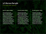 Fern Leaves slide 6