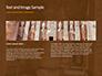 The Hieroglyphs of Ancient Egypt slide 14