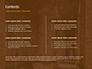 The Hieroglyphs of Ancient Egypt slide 2
