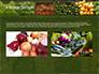 Vegetable Shop slide 11