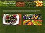 Vegetable Shop slide 12