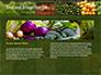 Vegetable Shop slide 14