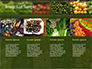 Vegetable Shop slide 16