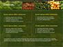 Vegetable Shop slide 2
