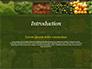 Vegetable Shop slide 3