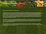 Vegetable Shop slide 4
