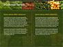 Vegetable Shop slide 5