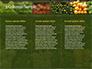 Vegetable Shop slide 6