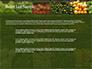 Vegetable Shop slide 7