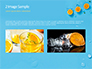 Summer Background with Oranges slide 11